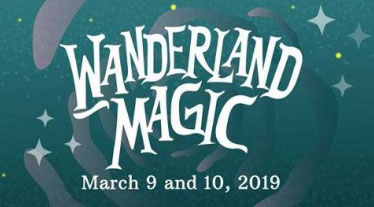 Diamond Hotel - Wanderland Magic